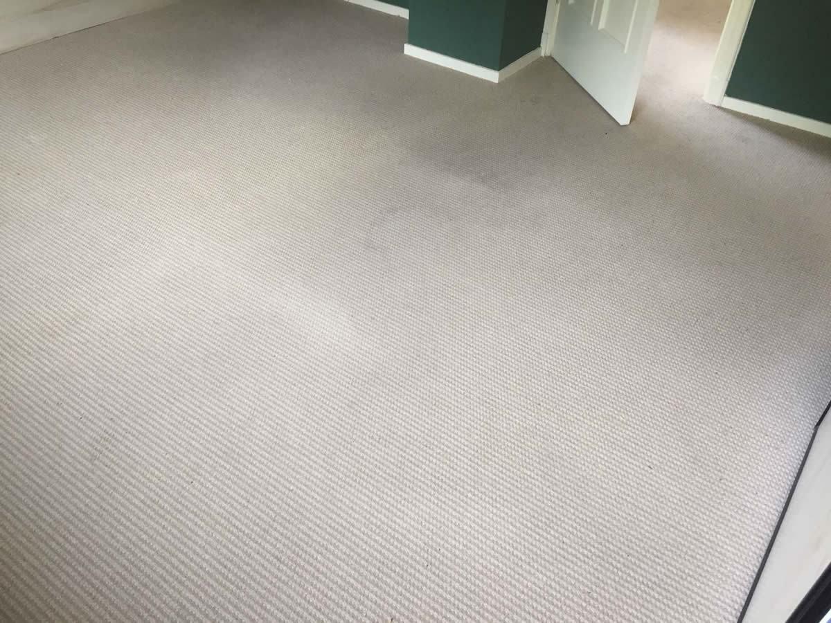 Hoogpolig Tapijt Reinigen : In hooghalen tapijt gereinigd in een particuliere woning